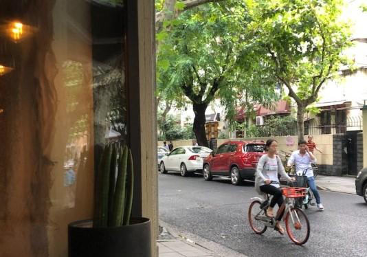 Şanghay Sokakları