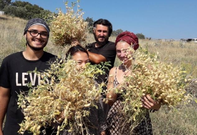 TaTuTa: Doğayla Bütünlük İçinde Farklı Bir Gönüllülük Deneyimi