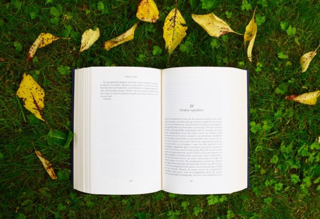 Büyükler İçin Çocuk Kitapları: İçinizdeki Çocuğu Keşfedin