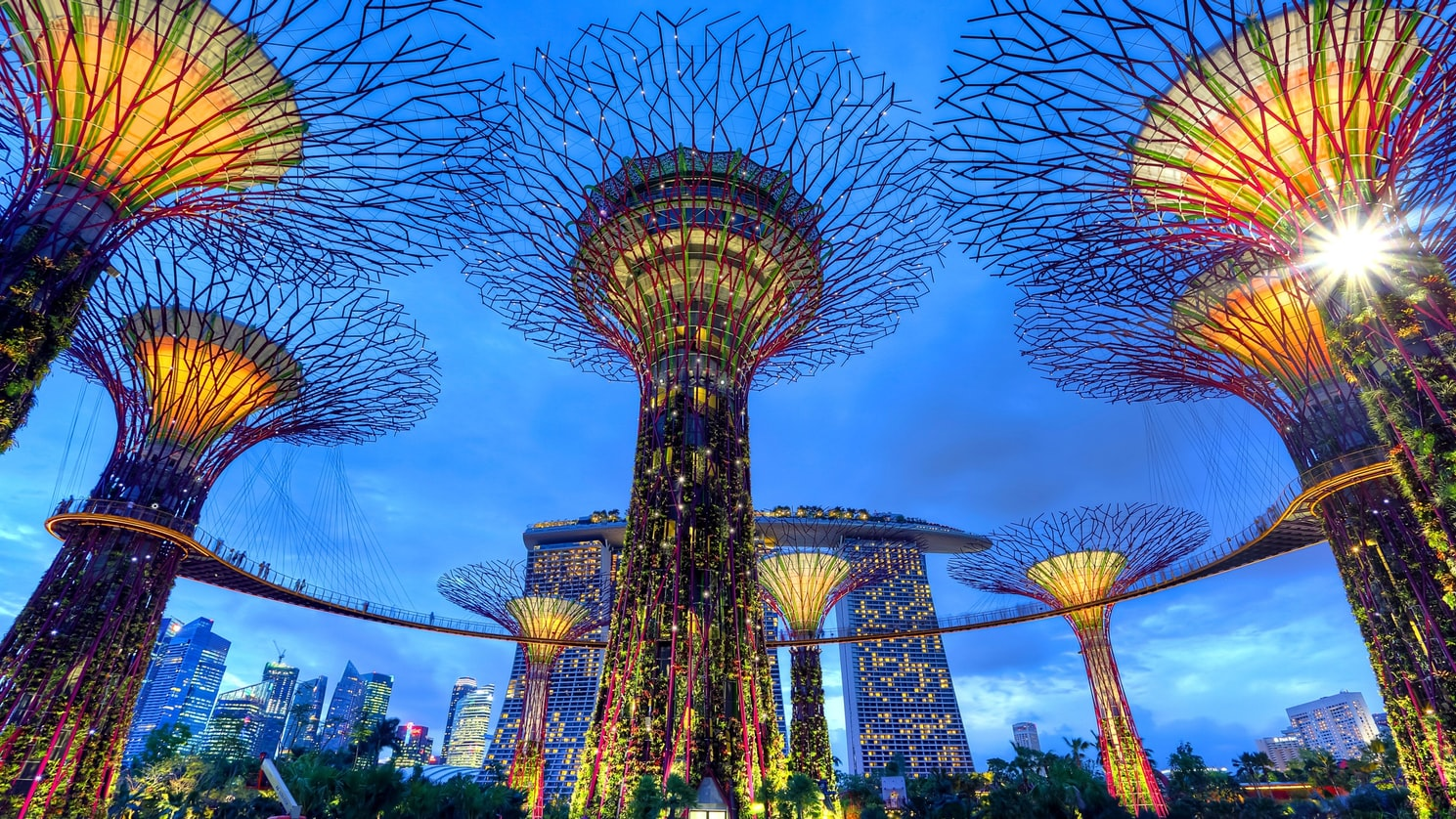 Singapur: Gardens By The Bay | Fotoğraf: Unsplash: Duy Nguyen