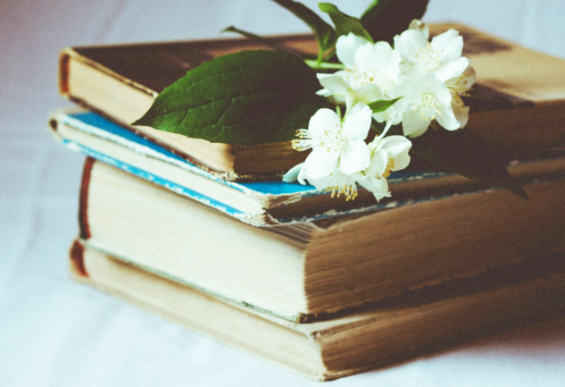 Nobel Edebiyat Ödüllü Kitaplar: Tanımanız Gereken Yazarlar