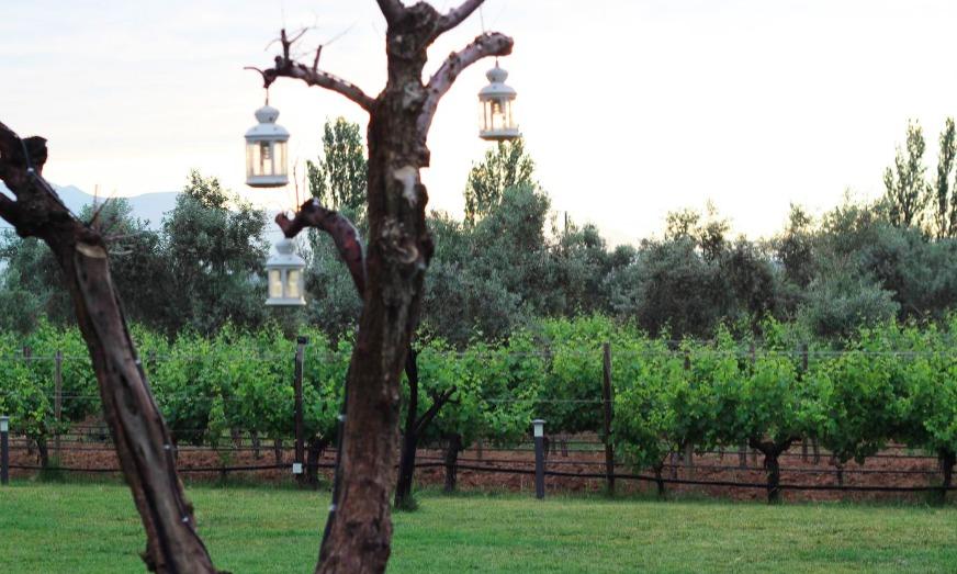 İsabey Bağları & Bağevi