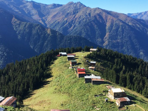 Karadeniz Yaylaları: Yemyeşil Bir Hafta Sonu Rotası