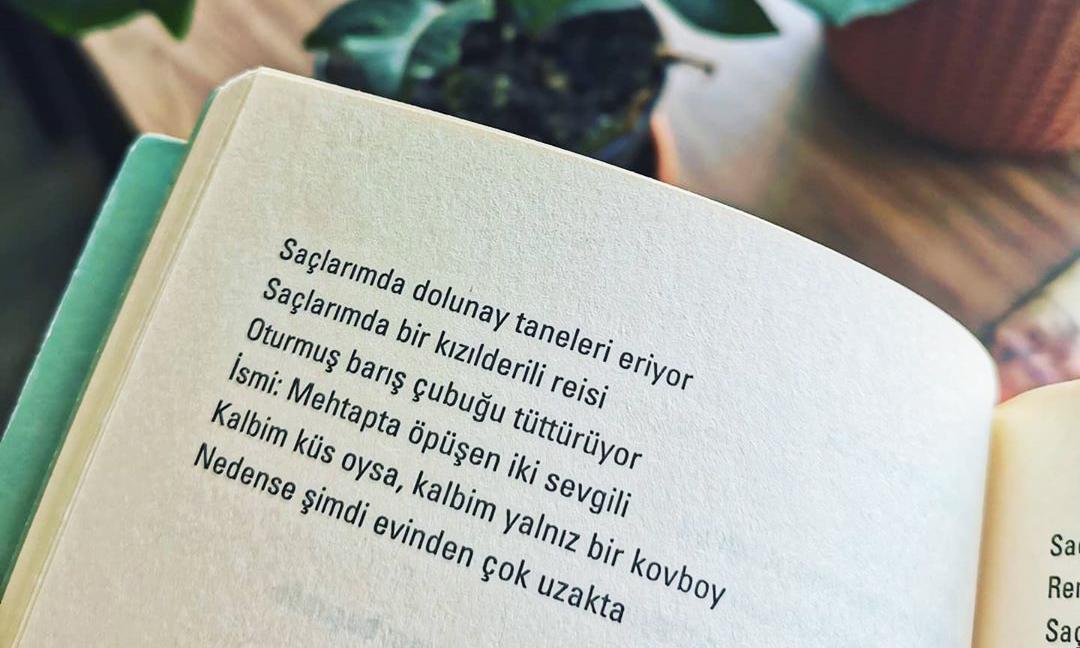 Şiir Kitapları