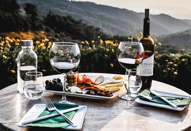 Ayda Winery: Bir Tutkunun Hayat Bulma Hikayesi