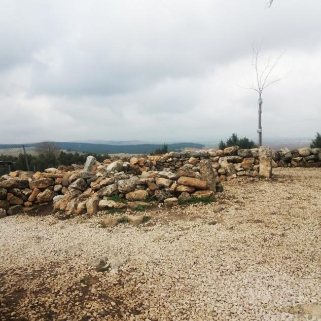 Göbekli Tepe'deki İsimsiz Türbeden