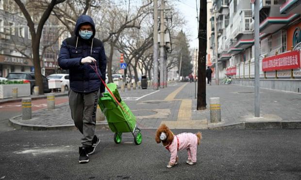 Köpeğiyle birlikte maske takmış bir adam