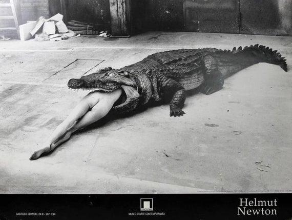 Helmut Newton timsah