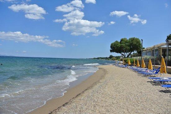 Marathonas Plajı