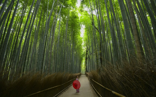 Japonlar'ın Mutlu Yaşam Sırları|