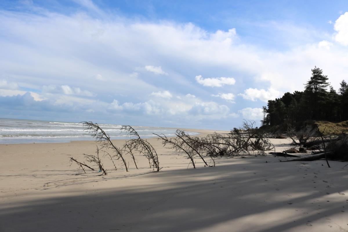irlanda sahilleri - curracloe beach