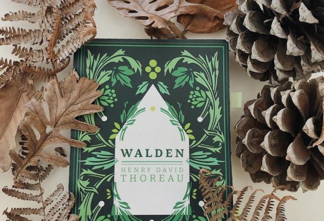 Walden: İnsanda Doğaya Kaçma İsteği Uyandıran Bir Kitap