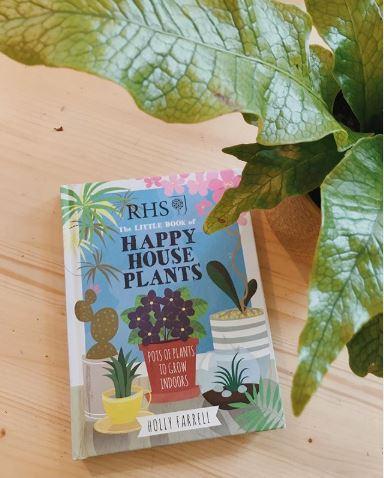 bitki yetiştiriciliği