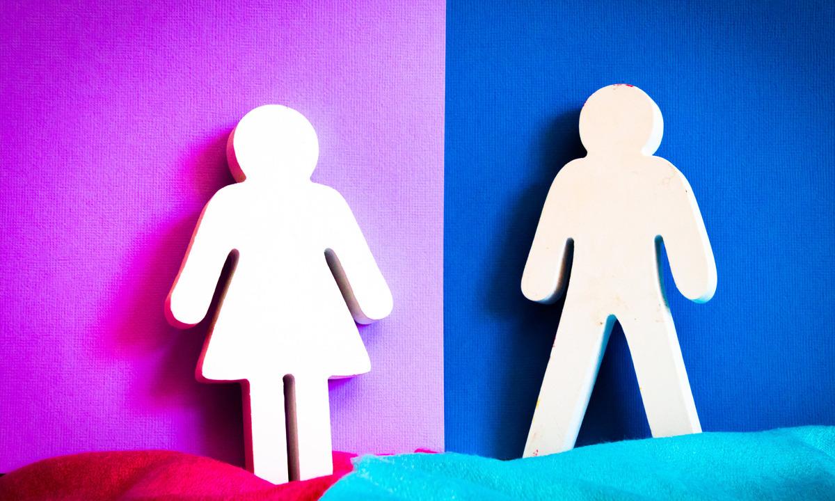 Cinsiyet Kategorisi