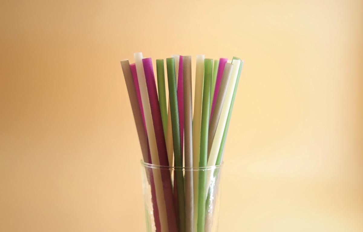 Tek Kullanımlık Plastikler