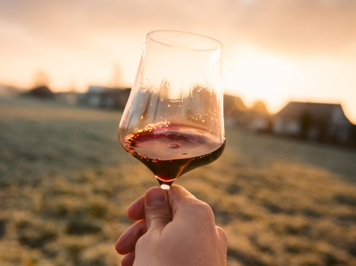 Şarap Önerileri