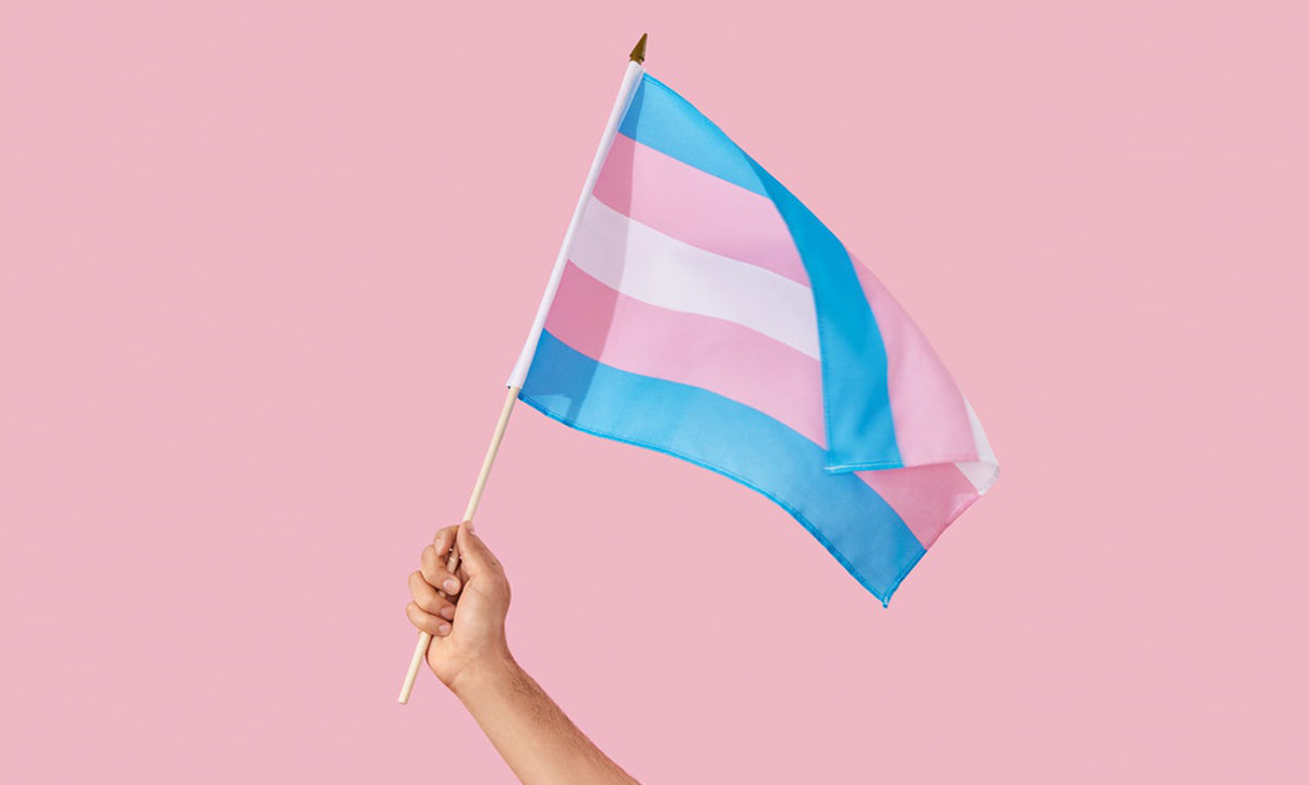 Transeksüel Bayrağı