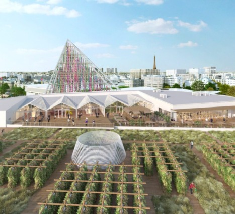 Dünya'nın En Büyük Kent Çiftliği Yakında Paris'te Aktif Hale Geliyor