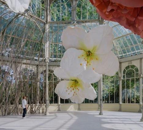 Sanatçı Petrit Halilaj, Devasa Çiçek Enstalasyonları ile Mekanları Güzelleştiriyor