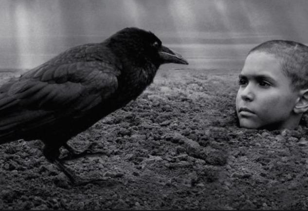 Boyalı Kuş: 360 Derece İstismarı Gözler Önüne Seren Film