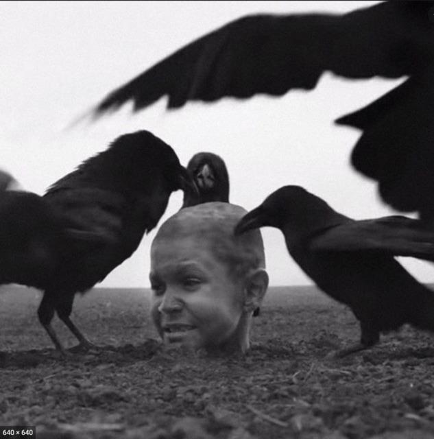 Boyalı Kuş