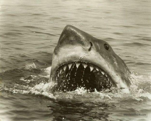 Bir Yaz Gecesi Sineması - Jaws