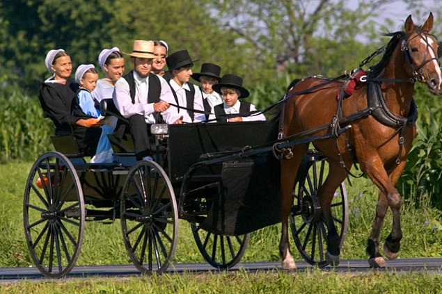 Amish Topluluğu