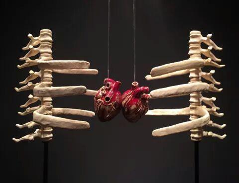 Sarılmanın Anatomisi: Luna Lu'dan, Sarılma Eylemi Üzerine