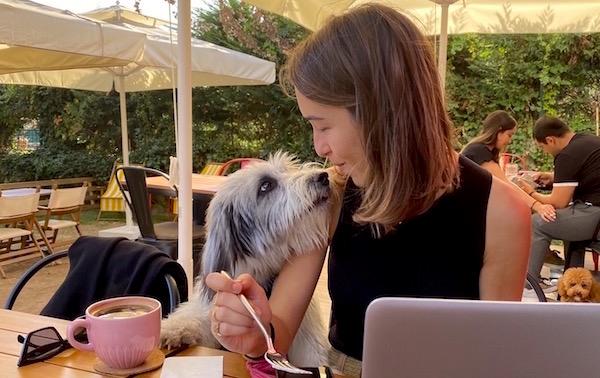 Roka Pups Cafe