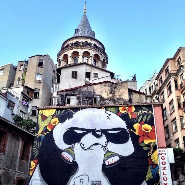 Kızgın Panda