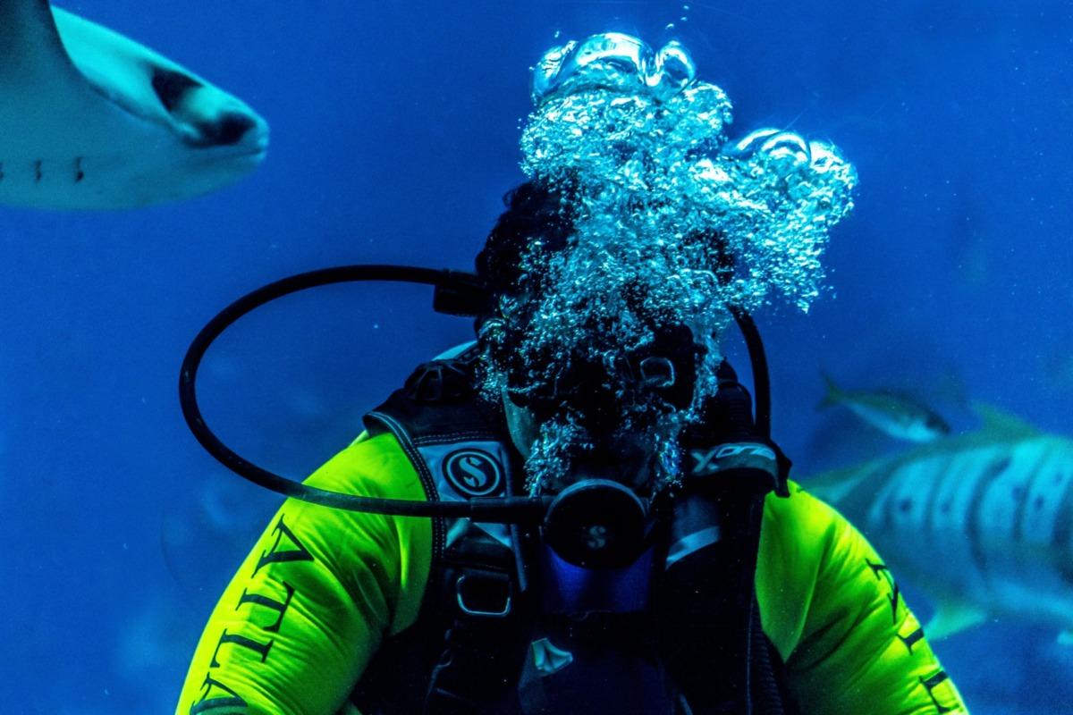 Scuba Diving (Tüplü Dalış)