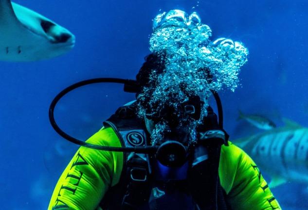 Kaş'ta Scuba Diving (Tüplü Dalış): Nefes, Beden ve Cesaret