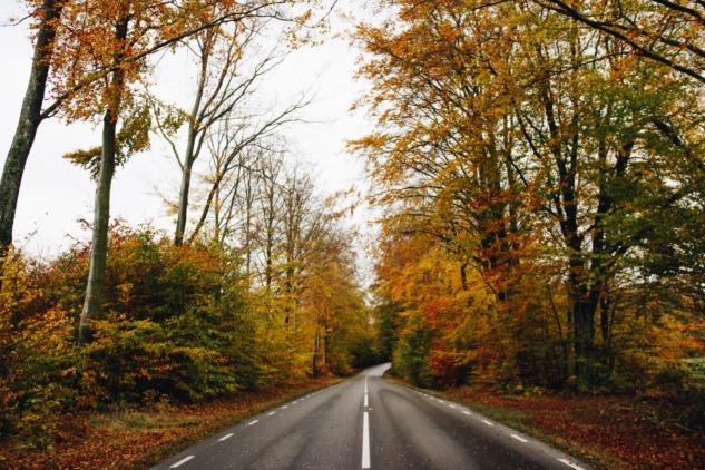 İsveç Yol Manzarası