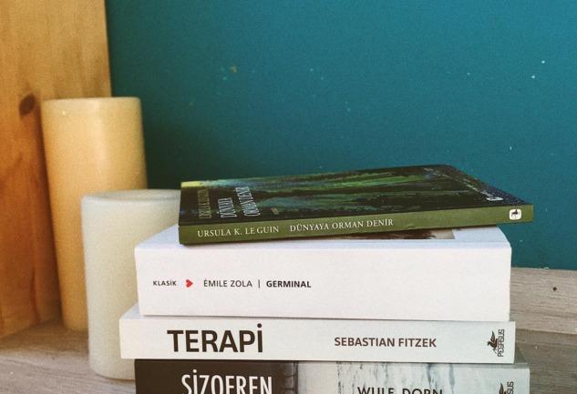 2020 Okumaları: Germinal, Şizofren, Terapi ve Dahası