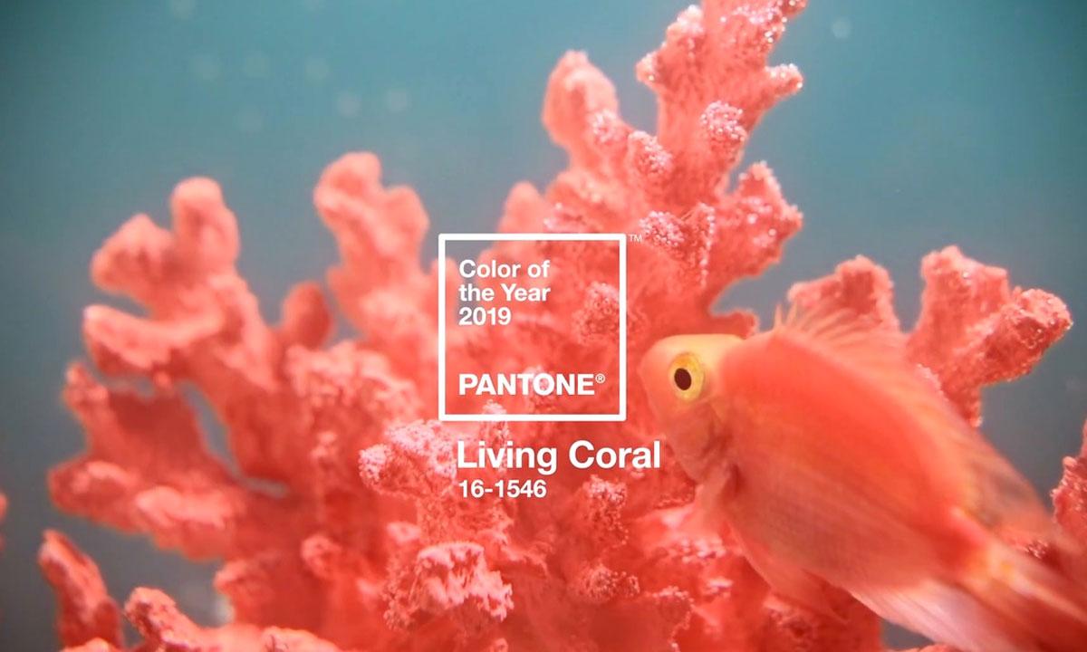 2019 PANTONE Yılın Rengi |