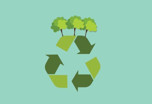 Çevre Dostu Uygulamalar: Ecosia, Oroeco ve Dahası