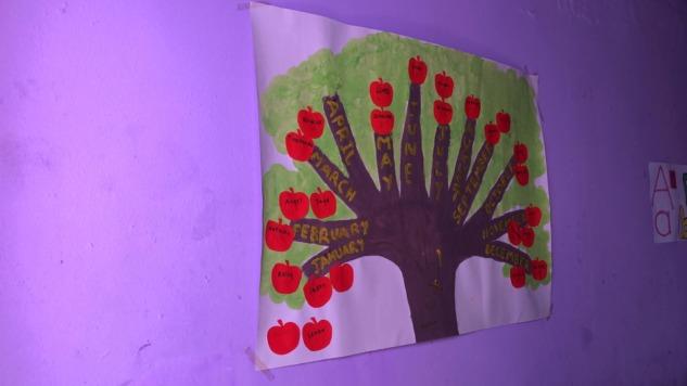 Doğum Günü Ağacı