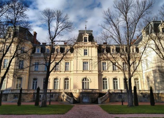 Potocki Sarayı