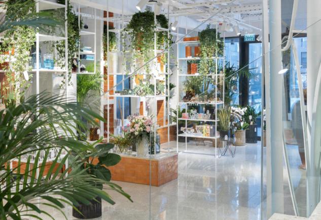 Yepyeni Bir Alışveriş Deneyimi: Paşabahçe Mağazaları Erenköy!