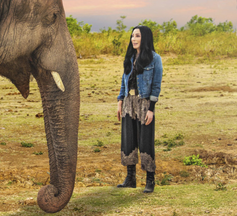 Cher & The Loneliest Elephant: Cher'in