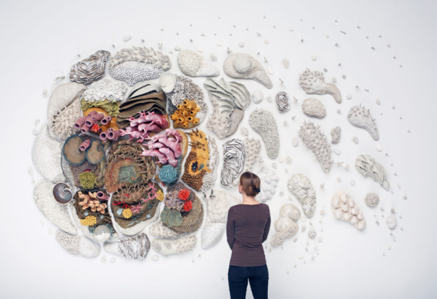 Mercan Resifleri ve Sanat: Farkındalık Yaratan Eserler
