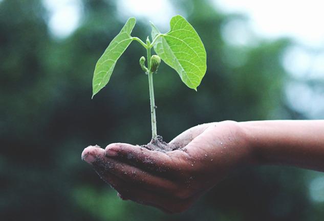 Kaizen Felsefesi: İyileştirme Arayışına Gerçekçi Bir Yaklaşım