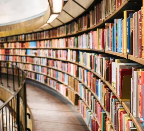 Dışarı Çıkma Kaygısı Yaşayan Çocuklar: Yardımcı Olabilecek Kitap Önerileri: