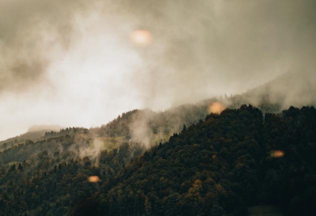 Ne Yapabiliriz?: Yangın Sürecinde Bilgi ve Yardım